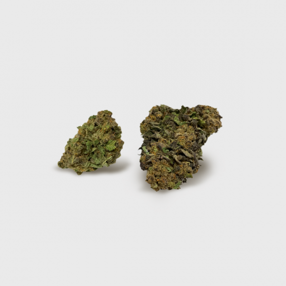 Gorilla Glue - infiorescenze canapa CDB THC