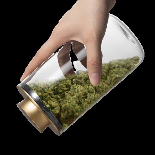 Stash Pro contenitore in vetro